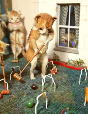 pottertaxidermy15